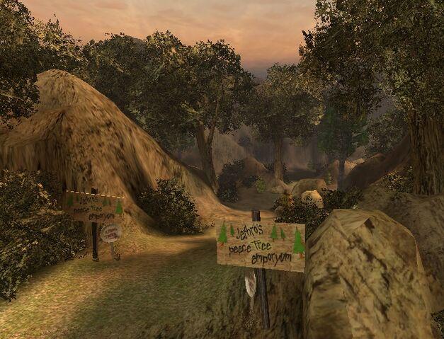 Plik:Forest.jpg