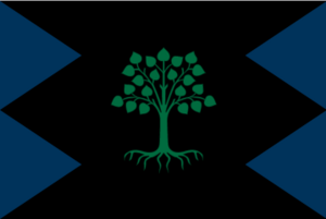 Custom Flag -6
