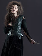 Bellatrix black lestrange by vjameslily-d3dn4v3