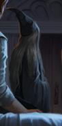 Dumbledore B4C36M1