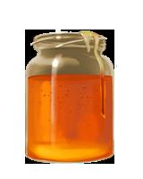 Honey-lrg-nrml