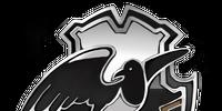 Montrose Magpies Quidditch Badge