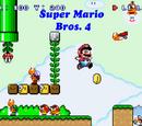 Super Mario Bros. 4 (series)