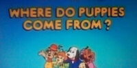 Episode 17: Where Do Puppies Come From?/Pups on the Loose