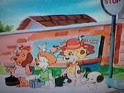 Pound Puppies at the Bus Stop