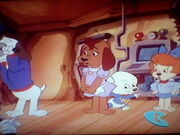 Pound Puppies Watching