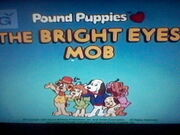 The Bright Eyes Mob