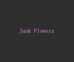 Junk flowers title card