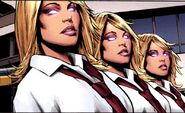 Stepford Cuckoos (Three in One)