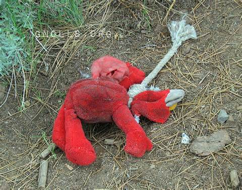 File:Elmo Died.jpeg