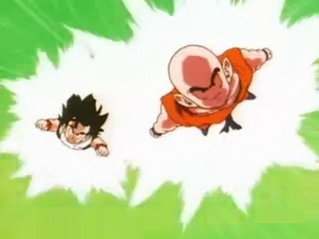 File:Krillin And Gohan Flies.JPG