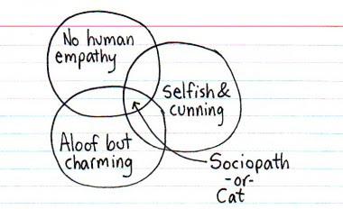 File:Sociopath or cat.jpg