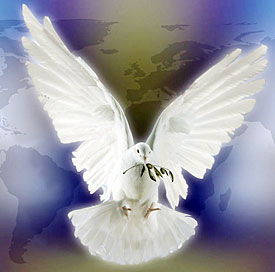 File:Peace-dove.jpg