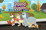 PoundPuppies2010TVT 8017