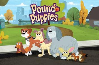 File:PoundPuppies2010TVT 8017.jpg