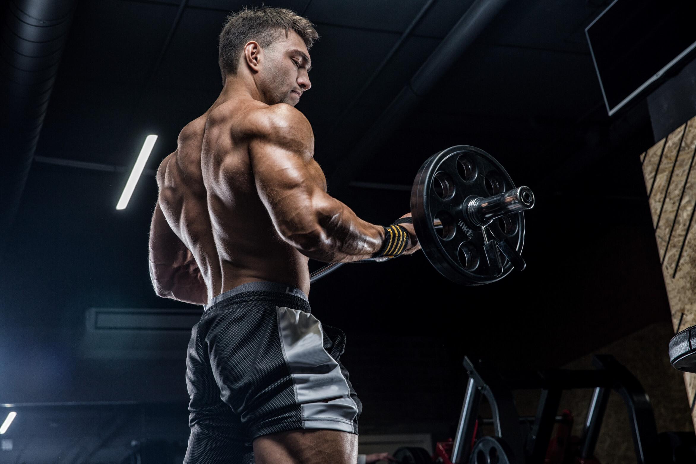 File:Bodybuilding-training-program1.jpg