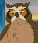 Mr-owl-franklin-14.7