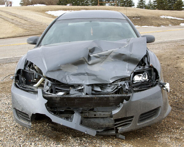 File:Car-deer collision damage.jpg