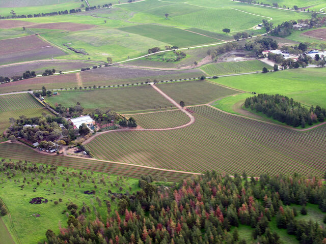 File:Barossa Valley South Australia.jpg