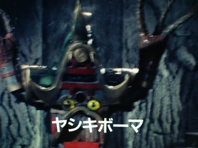 File:ヤシキボーマ.jpg
