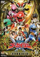 Gokaiger DVD Vol 12