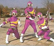 KuneKune Soldiers