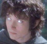 Suedom-Frodo