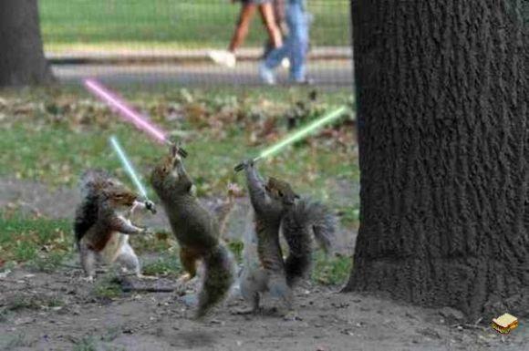 File:SquirrelLightsaber.jpg