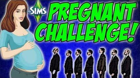 The Sims 3 - Pregnant Challenge 4 Seasons