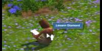 Leeann Diamond