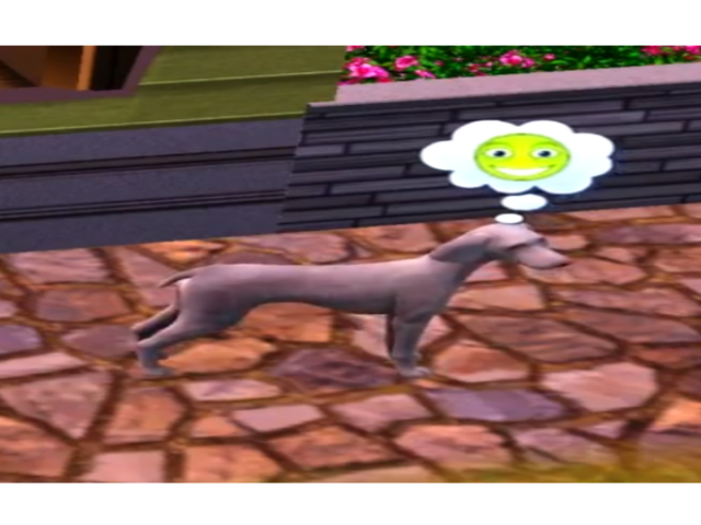 File:Happy Stray Dog.png