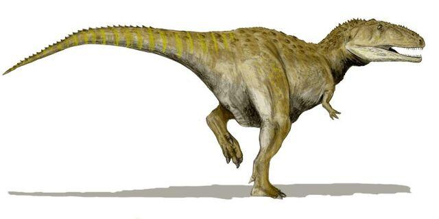 File:Mapusaurus 2.jpg