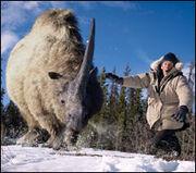 Prehistoric Park Elasmotherium