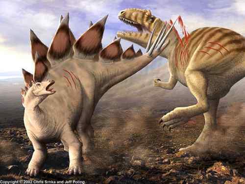 File:Allosaurus vs Stegosaurus.jpg
