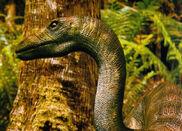Anchisaurus-dinosaur-picture