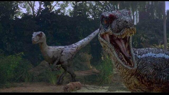 File:Deinonychus-1-.jpg