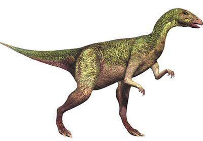 Dryosaurus 1