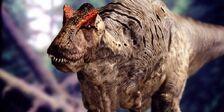 Allosaurus-wwd-800 medium