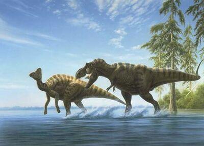 Hypacrosaurus23