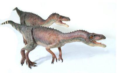 Eoraptor018