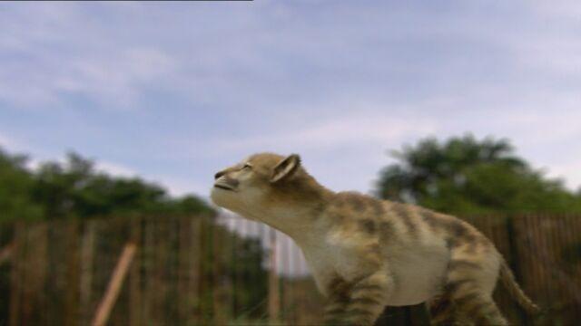 File:Smilodon-cub1.jpg