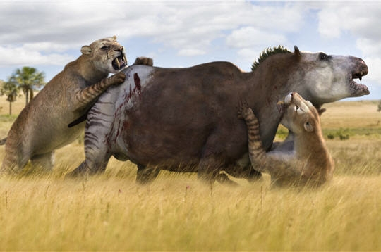 File:Smilodon attacks Togcbxodon.jpg