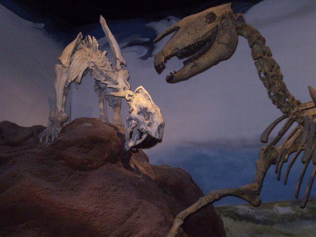 File:Smilodon with prehistoric horse.jpg