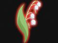 HPC43.Flower