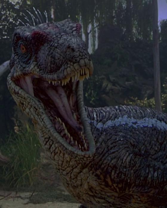 Il Primo Buon Giorno Dell'Imperatore Raptor
