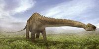 Diplodocus (PAS)
