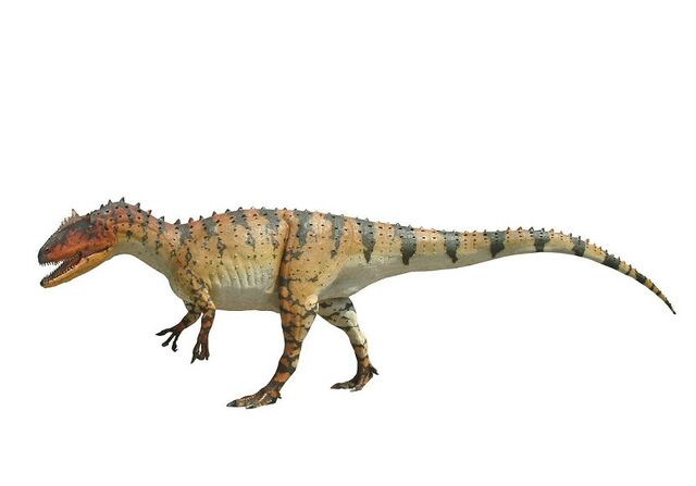 File:Allosaurus0002-1-.jpg