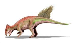 Liaoceratops BW
