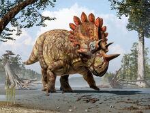 New-Species-of-Horned-Dinosaur-Regaliceratops-Peterhewsi