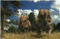 Einiosaurus das